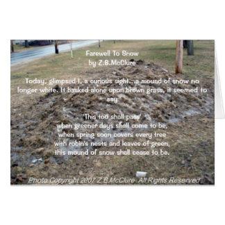 el poema del snowbird tarjeta de felicitación