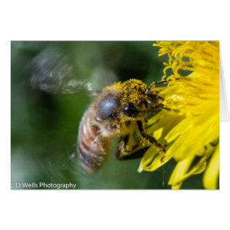El polen cubrió la abeja tarjeta