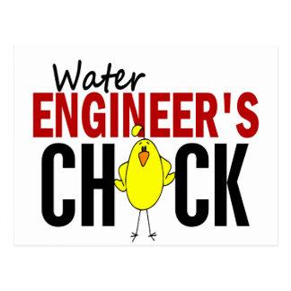 El polluelo del ingeniero del agua postal