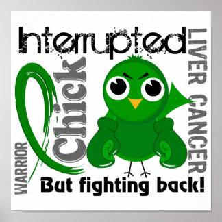 El polluelo interrumpió al cáncer de hígado 3 poster