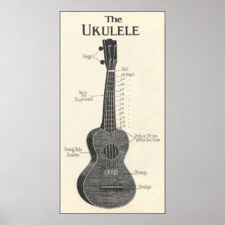 El poster del Ukulele Póster