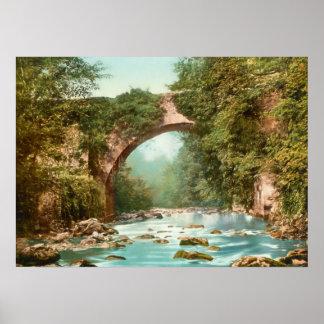 El puente de Dargle en Irlanda Póster