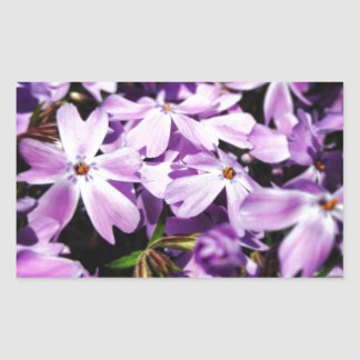 El remiendo púrpura de la flor pegatina rectangular