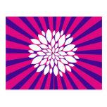 El resplandor solar púrpura Sun de las rosas fuert Postal