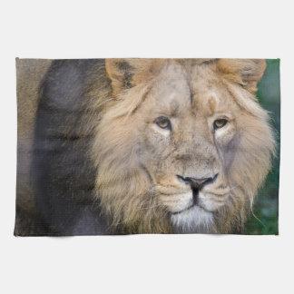 el rey toallas de mano
