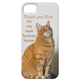 El rezo del gato le agradece dios por mi nuevo hog iPhone 5 carcasas