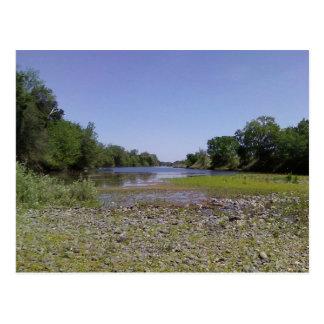 El río americano en Sacramento, CA Postal
