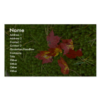 El rojo coloreó las hojas de arce caídas en la alf tarjetas de visita