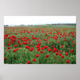 El rojo del paisaje de la naturaleza del campo de póster