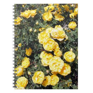 El rosa amarillo soleado florece el autobús cuadernos