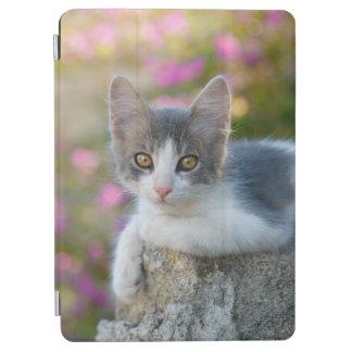 El rosa bicolor joven lindo del gatito del gato cover de iPad air