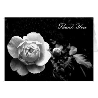 El rosa blanco le agradece tarjeta pequeña