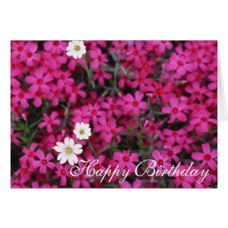 El rosa bonito florece la tarjeta del feliz cumple