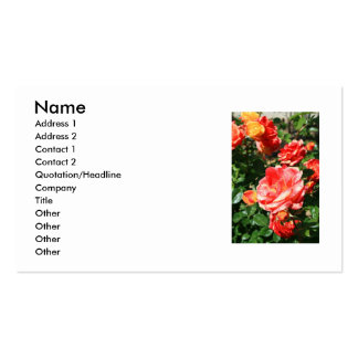 El rosa rojo florece la tarjeta de visita