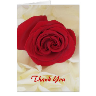 El rosa rojo suave le agradece las tarjetas