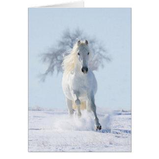 El semental de la nieve y la tarjeta de