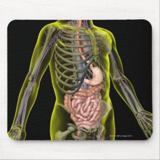 El sistema digestivo alfombrilla de ratón
