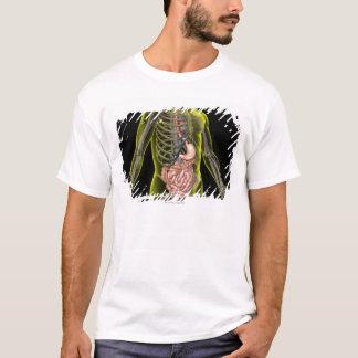El sistema digestivo camiseta