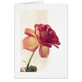 el solo rosa corrigió 2, día de San Valentín feliz Tarjeta De Felicitación