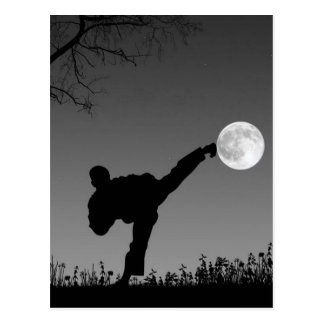El Taekwondo Postal