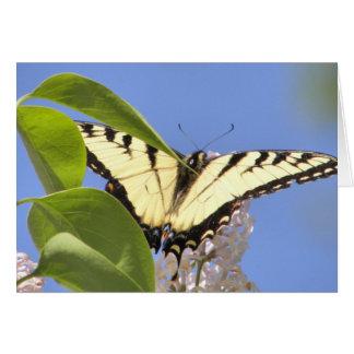 El tigre del este Swallowtail toma vuelo Tarjeta De Felicitación
