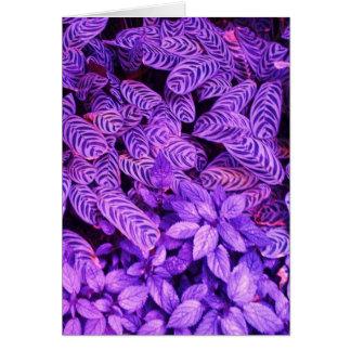 El tigre púrpura brillante sale de la tarjeta de