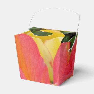 El tulipán colorido saca la caja del favor