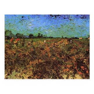 El viñedo verde de Vincent van Gogh Postal