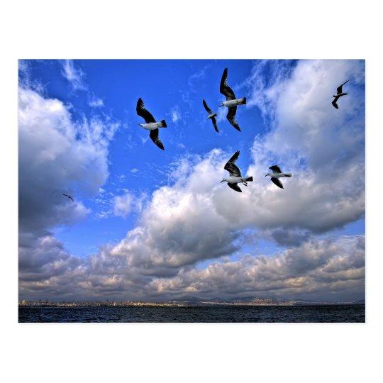 El vuelo de la libertad lanzó nuestras alas postal