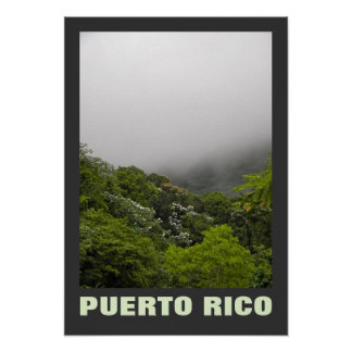 EL Yunque, Puerto Rico Póster