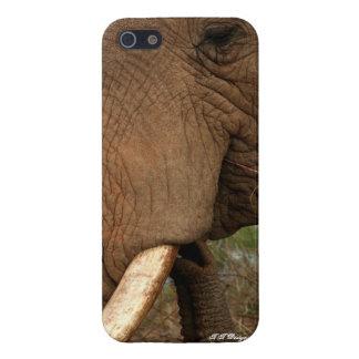Ele iPhone 5 Carcasas