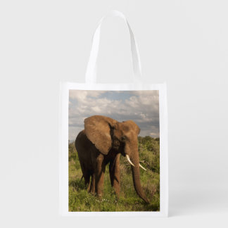 Elefante africano, africana del Loxodonta, hacia f Bolsas Para La Compra