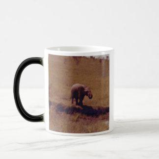 Elefante africano del bebé tazas