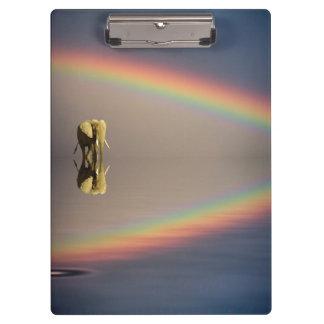 Elefante, agua, y arco iris, Kenia