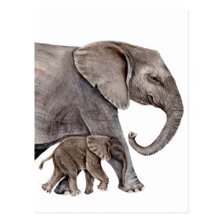 Elefante con el elefante del bebé postal