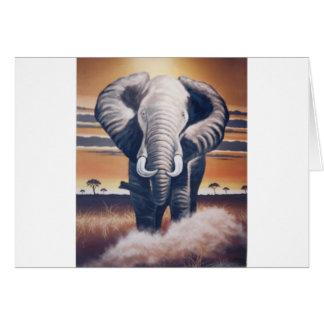 Elefante del safari felicitaciones