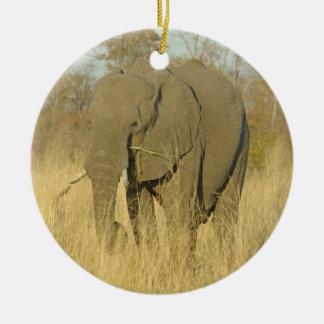 Elefante en la hierba alta adorno redondo de cerámica