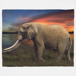 Elefante en la manta del paño grueso y suave de la