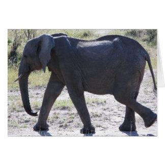 Elefante juvenil tarjeta de felicitación