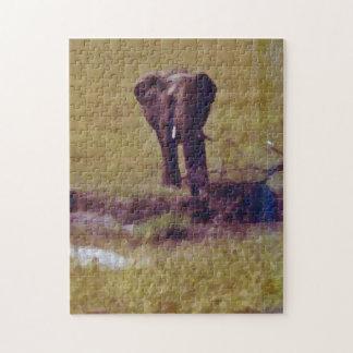 Elefante solitario rompecabezas con fotos