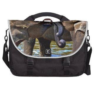 Elefantes jovenes bolsas para ordenador