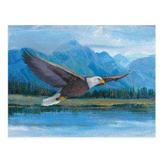 Elevación de Eagle calvo Postal