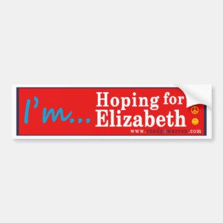 Elizabeth Warren para la pegatina para el