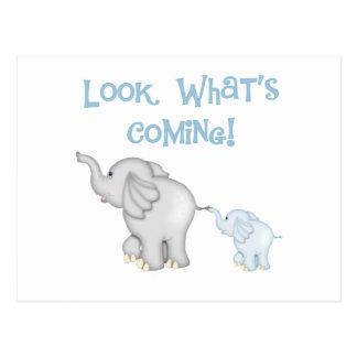Embarazo azul del elefante postal