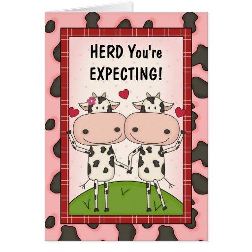 Embarazo - vacas para los padres expectantes felicitaciones