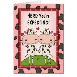 Embarazo - vacas para los padres expectantes tarjeta de felicitación