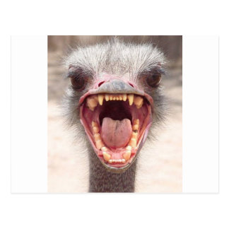 emu postal