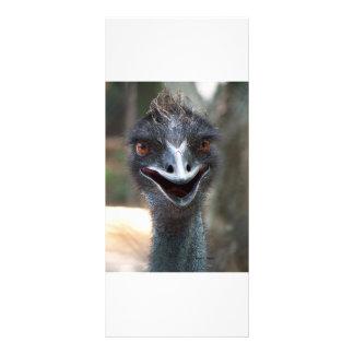 ¡Emu que dice el HI! Imagen grande de los ojos del Folleto Publicitario 10 X 22,8 Cm