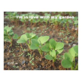 En amor con mi jardín - cuadro
