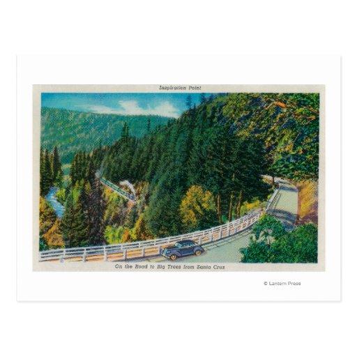 En el camino a los árboles grandes de Santa Cruz Tarjetas Postales